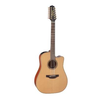 Takamine Pro Series Guitar