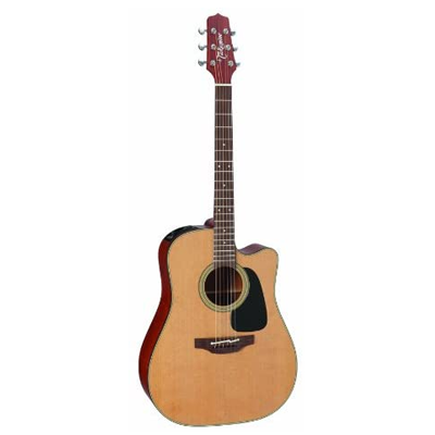 Takamine Pro Series Acoustic Guitar