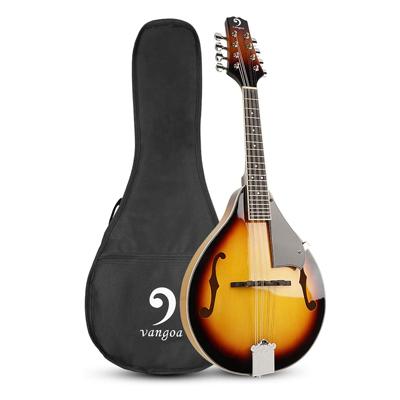 Mandolin Musical Instrument