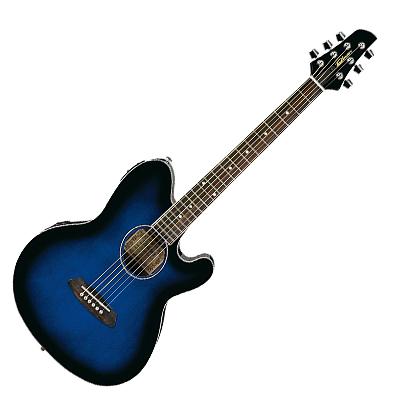 Ibanez 6 String Acoustic Guitar