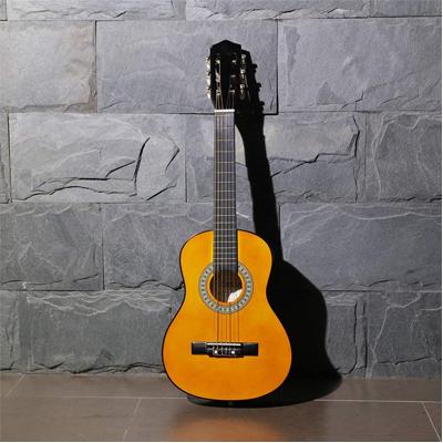 Beginner Acoustic Classical Guitar